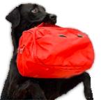 Logo servizio pensione con Labrador Retriever nero